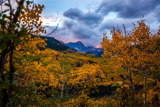 Snowmass Fall Scenery