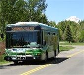 Village Shuttle Summer Schedules