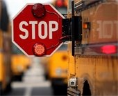 Stop for the bus