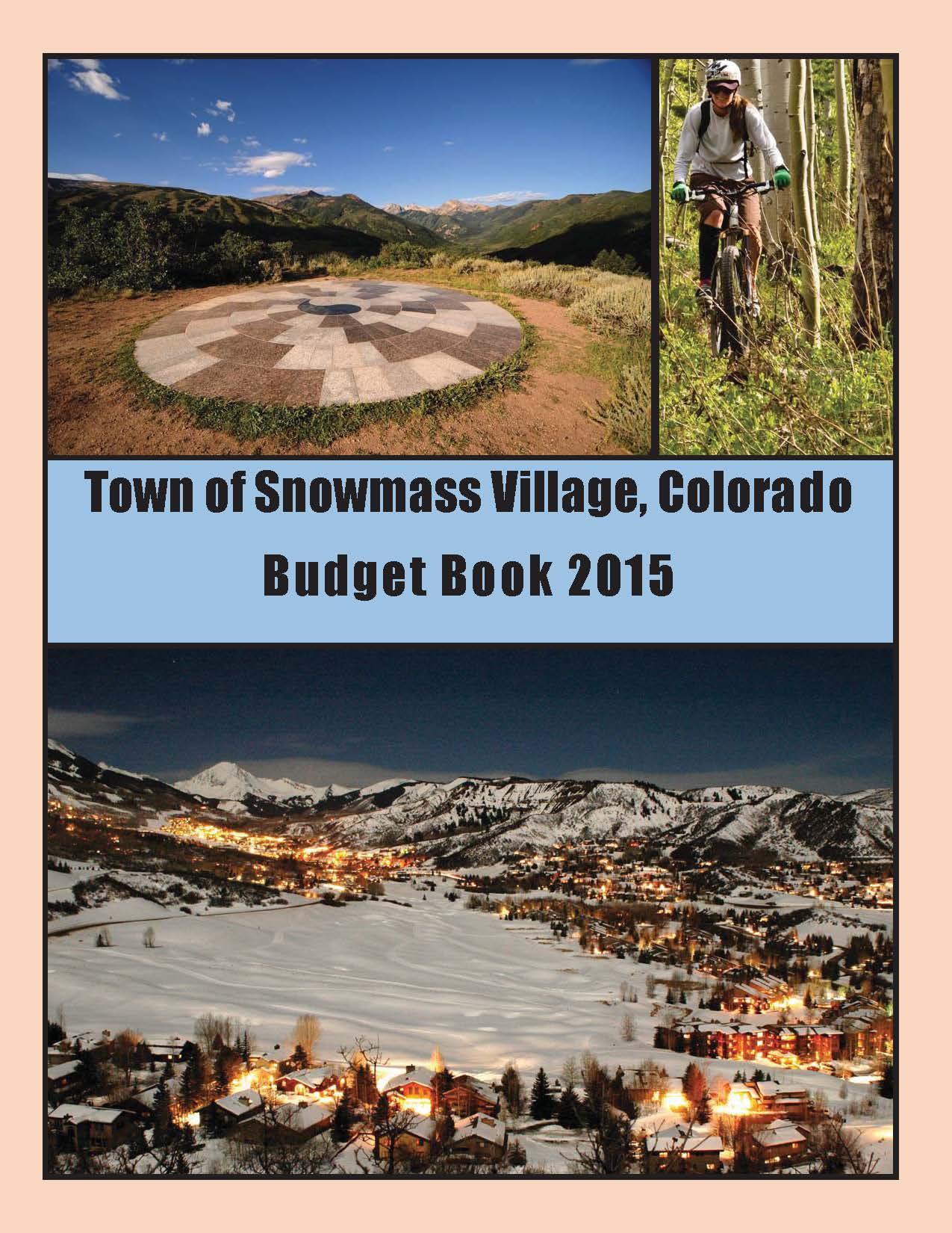 2015 BUDGET BOOK cover