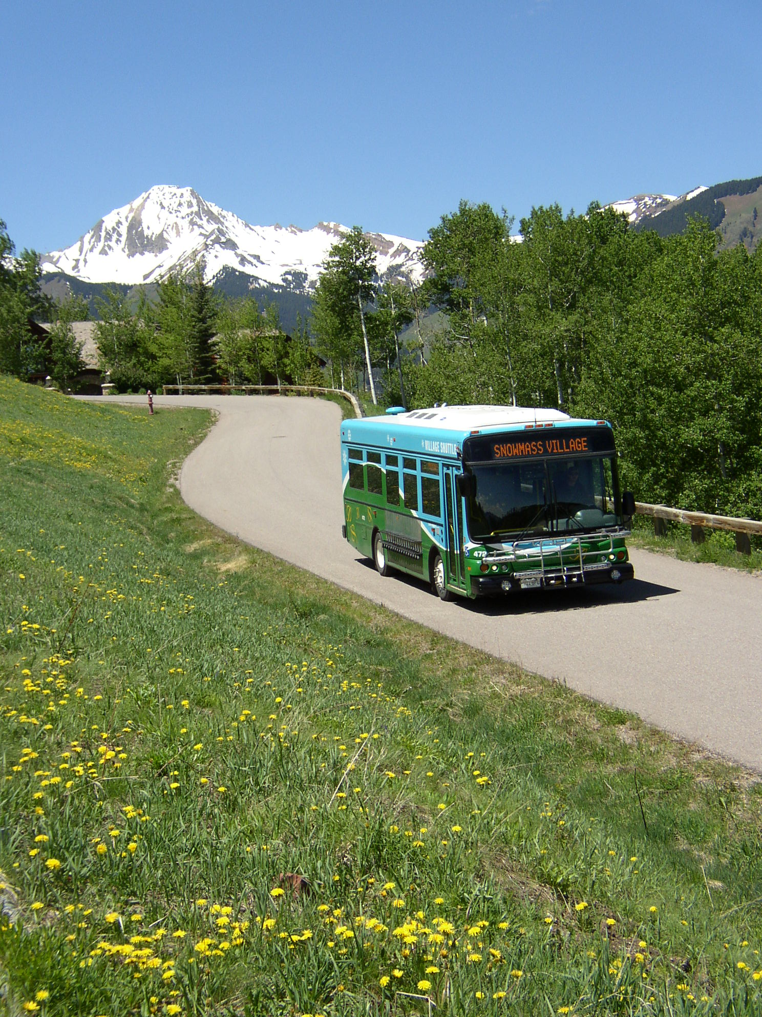bus and mountain